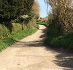Footpaths in Pentridge Dorset